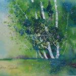 occum-pond-summer